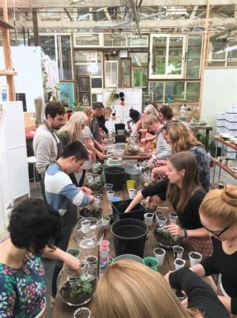 Sydney corporate terrarium workshop