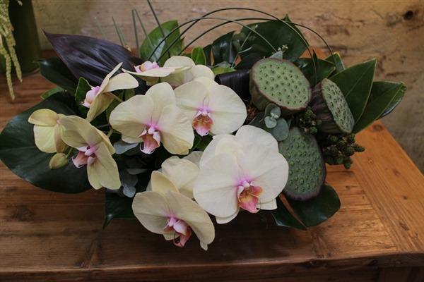 sydney corpoate flowers