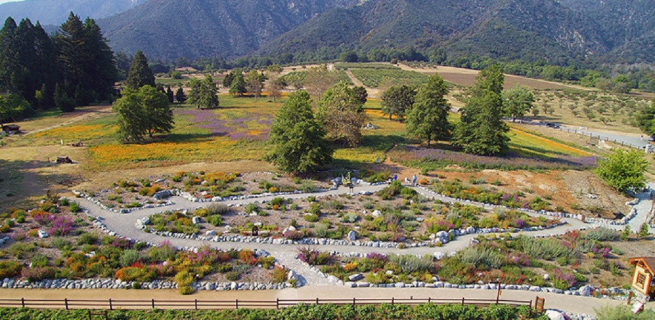 The Wildlands Conservancy Southern California Montane Botanic Garden
